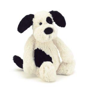 black&cream puppy
